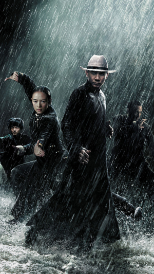 The Grandmaster 2013 movie